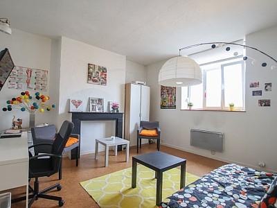 APPARTEMENT T1 A LOUER - LILLE WAZEMMES - 30,11 m2 - 580 € charges comprises par mois