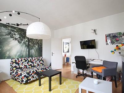 APPARTEMENT T1 A LOUER - LILLE WAZEMMES - 30,11 m2 - 550 € charges comprises par mois